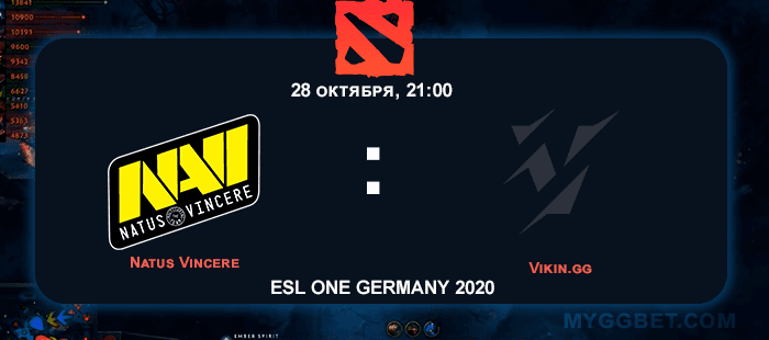 Прогноз на матч Natus Vincere vs Vikin.gg 28 октября 2020 года