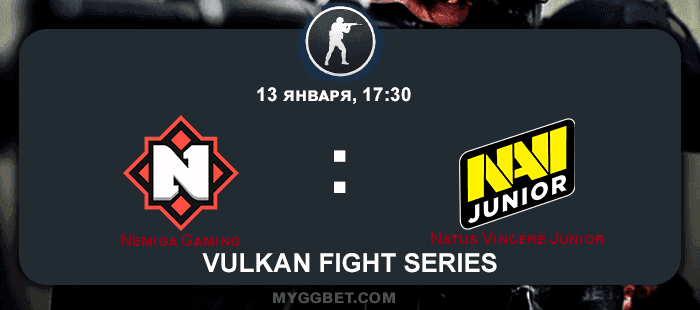 Прогноз на матч Nemiga Gaming vs Natus Vincere Junior 14 января 2021 года